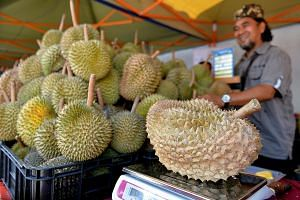 Constant rain since the Chinese New Year has made it hard for durian trees to bear fruit, and farms are struggling to keep up with rising demand amid limited supply. Prices have spiked as a result, with the popular Mao Shan Wang selling at a record R