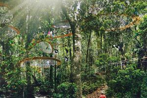 Artist's impression of the Rainforest Park in Mandai.