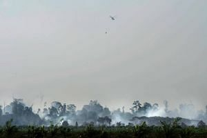 The forest fire rages on as a helicopter drops water over a peat fire in Meulaboh, Aceh province, on July 26, 2017.