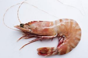 People with allergies to food, for example, prawns and shellfish, should avoid them, say health experts.