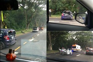 An accident involving a motorist and a wild boar has occurred for the second day in a row.
