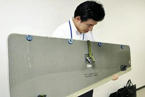 A panel that fell off an ANA aircraft and was found in Japan's Ibaraki Prefecture.