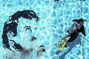 A painting of Sheikh Tamim in a swimming pool at Qatar University.