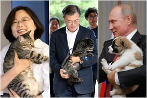Paddles joins the list of other famous pets owned by politicians.