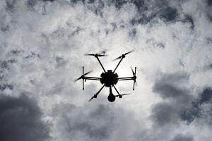 Singapore journalist Lau Hon Meng, 43, and Malaysian journalist Mok Choy Lin, 47, had flown a drone over a parliament building in Naypyitaw.