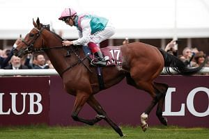 Italian jockey Frankie Dettori riding Enable to victory at the Qatar Prix de l'Arc de Triomphe (Group 1) last month.