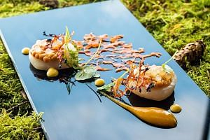 Among the highlights at Stellar at 1-Altitude is hand-dive scallops with burnt chilli spheres, lime pearls and caramelised corn.