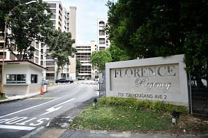 Privatised HUDC estate Florence Regency in Hougang was one of just two of the 16 residential sales en bloc this year that went to foreign firms. It was sold to Hong Kong-listed Logan Property. Local developers stand a better chance of building up the