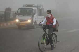 An Indian school boy cycles to school after three days off due to heavy smog in Amritsar on Nov 13, 2017.