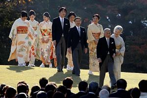 Japan's Emperor Akihito and Empress Michiko leading the way, followed by Crown Prince Naruhito and Crown Princess Masako, Prince Akishino and Princess Kiko and other imperial family members, at the annual autumn garden party at the Akasaka Palace imp
