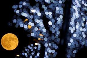 The supermoon behind Christmas lights in Marseille, France .