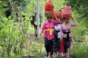 Balinese villagers carrying offerings for a ceremony yesterday, at which they will pray for Mount Agung to stop erupting. The volcano in Karangasem regency on Indonesia's resort island started spewing ash on Nov 21, leading to the evacuation of tens