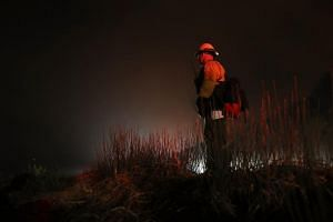 A firefighter monitors hot spots as the Thomas fire burns in the Los Padres National Forest on Dec 8, 2017 near Ojai, California.