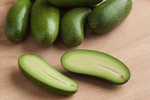 British retailer Marks & Spencer is selling a new stoneless avocado that also boasts edible skin.