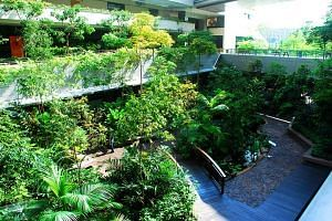 The Khoo Teck Puat Hospital pipped three American contenders and one from Japan to the inaugural Stephen R. Kellert Biophilic Design Award.
