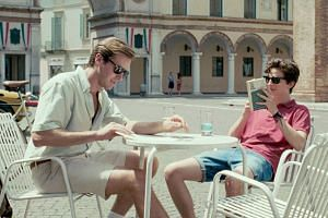 Timothee Chalamet (right) and Armie Hammer are well cast in Call Me By Your Name.