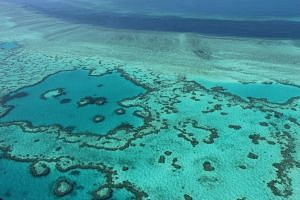 An aerial view of the Great Barrier Reef off the coast of the Whitsunday Islands, in November 2014.