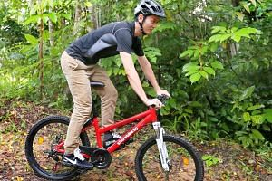 Mr Ethan Tan's company, ShareBikeSG, differentiates itself from the five other companies as it offers mountain bikes. The bicycles will also help bridge the 1km distance between Chestnut Nature Park, where he has a bike rental service for cyclists ri