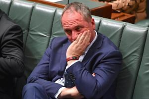 Australia's married deputy prime minister Barnaby Joyce admitted his marriage had broken down after Sydney's Daily Telegraph splashed a picture of his 33-year-old pregnant lover on its frontpage.