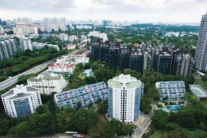 Depending on the size of their units, Tulip Garden owners stand to receive between S$3.6 million and S$6.3 million from a successful sale.