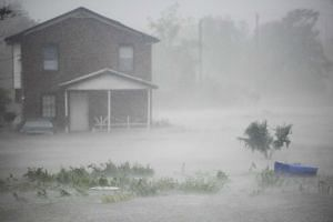 Nearly half of the 92 cities in the C40 network saw extreme flooding last year.
