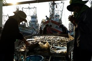 Migrant workers sort fish and seafood unloaded a port in Thailand's Samut Sakhon province on Jan 22, 2018.