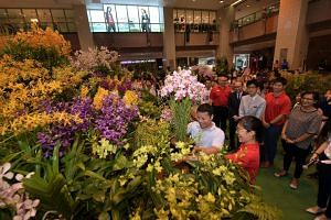 Minister for Social and Family Development Desmond Lee and National Orchid Garden manager Sheryl Koh place the final pot of orchids into the world's largest flower basket, on March 10, 2018.