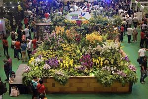 The Singapore Garden Festival, which has been held once every two years since 2006, serves as a platform to showcase horticultural and gardening products and services from all over the world.