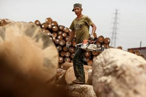 A worker holds a chain-saw to cut timber at a woodyard in Tianjin, China. There are hundreds of items on the Trump administration's proposed list of Chinese imports to be targeted for new US tariffs, including things like grenades, bombs and even cha