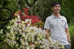 Senior manager Mark Choo's orchid passion is driven by the chase to find a rare variety as well as the desire to make it flower. There are more than 1,000 orchids in the bungalow garden (above) belonging to Mr Choo's parents in Sunset Way, including