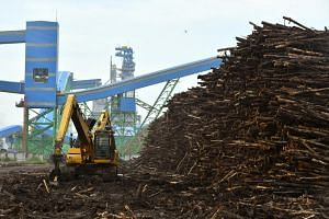 A chip conveyor system and log storage seen at the Asia Pulp & Paper Group (APP) OKI mill in Palembang on Feb 27, 2017.