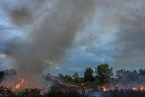 Firefighters putting out bush fires in Pekanbaru, Riau province, on Monday. Since the 2015 haze crisis, Indonesia has taken significant steps to reduce forest fires.