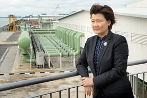File photo showing Olivia Lum, founder of Hyflux, at the company's Tuaspring Desalination Plant at Tuas on Sept 10, 2013.