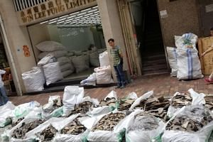 Bags of shark fins from a Singapore Airlines shipment are seen in Hong Kong, on May 11, 2018.