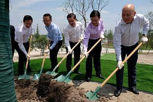 Finance Minister Heng Swee Keat (second from right) planting a young beech tree at the Singapore-Nanjing Eco Hi-Tech Island on June 2, 2018.