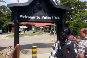NParks said the asbestos on Pulau Ubin was detected at the end of May, and that works to remove the debris and decontaminate the sites were completed by June 1.