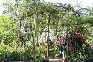 The National Orchid Garden in the Singapore Botanic Gardens is the world's largest orchid garden, with 1,000 species and 2,000 hybrids.
