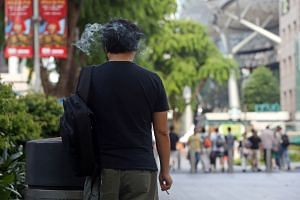 Orchard Road was originally scheduled to go smoke-free on July 1, with smokers able to light up only in designated smoking areas.