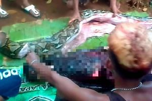 The body of Wa Tiba (bottom) lies next to a python after villagers cut open the snake which was found bloated in the village of Persiapan Lawela on the island of Muna, offshore of Sulawesi, on June 16, 2018.