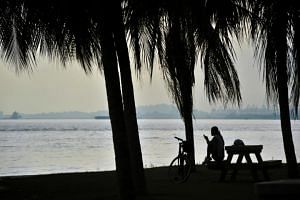 A girl sits on a bench along East Coast Park while using her mobile phone.