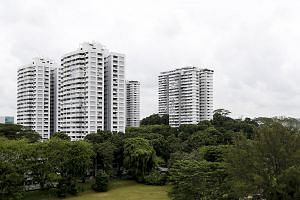 "Analysts said ""megasites"" such as Braddell View (above), Mandarin Gardens and Laguna Park face an even greater challenge in luring developers, what with the higher land acquisition costs."