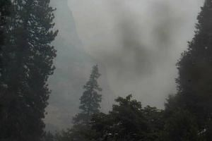 Smoke from the forest fire that has destroyed 50 sq km and left one person dead, rising above the trees near the Yosemite Falls area in Yosemite, California, on July 17, 2018.