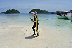 File photo showing a Chinese tourist walking on a beach on the Rock Islands in Palau, on March 5, 2015.