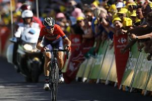 Nibali crosses the finish line during the 12th stage of the Tour de France.