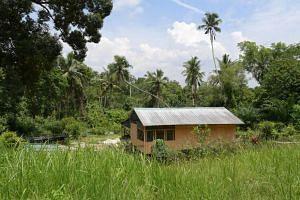 A house seem among vegetation on the island of Pulau Ubin.