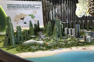 Model of the Forest City project seen at an office at 143 Cecil Street, on Aug 27, 2018.