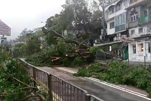 A view of the Typhoon Mangkhut damage in Hong Kong, on Sept 16, 2018.