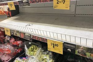 Empty shelves, normally stocked with strawberry punnets, are seen at a Coles Supermarket in Brisbane, Australia, on Sept 14, 2018.