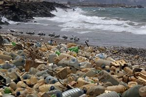 According to the United Nations environment agency, 70 per cent of the large plastic waste that floats on the seas comes from fishing.