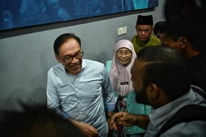 Ruling pact Pakatan Harapan is fielding Datuk Seri Anwar Ibrahim to contest the seat in Port Dickson.